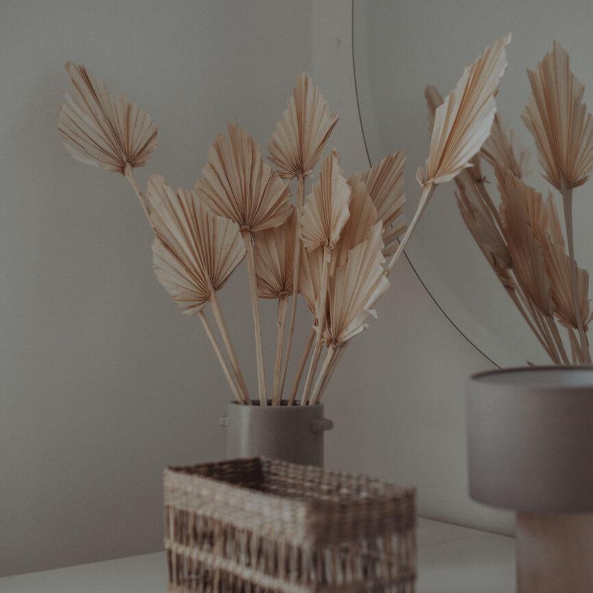Palmspeer gebleicht