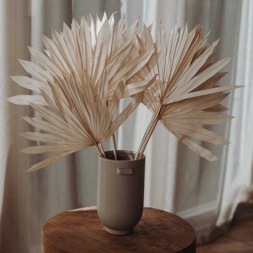 Palmsperre gebleicht 3stk