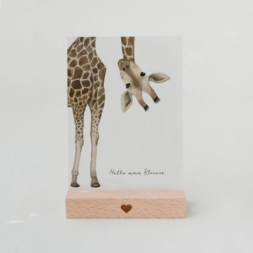 Eulenschnitt Postkarte giraffe